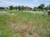 Building Plot just 3km from the Black Sea and Balchik.